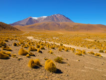 Mountain landscape of Cordillera de Lipez in. High peaks and typical grass clumps in Cordillera de Lipez in southern bolivian Altiplano Stock Photo