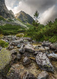 Mountain Landscape with a Creek Royalty Free Stock Photos