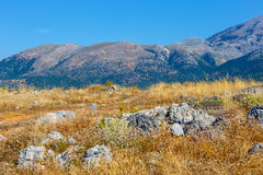 Mountain landscape of Crete near Malia, Greece. Beautiful mountain landscape of Crete near Malia, Greece Stock Photos