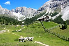 Mountain landscape, Dolomites, Italy Royalty Free Stock Photography