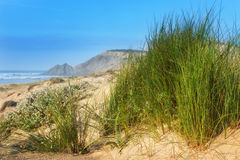 Mountain landscape of dunes . Stock Images