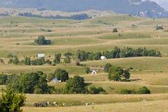 Mountain landscape - Durmitor, Montenegro Stock Image