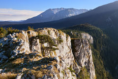 Mountain landscape. Durmitor National Park - Montenegro Royalty Free Stock Images