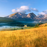 Mountain landscape. Durmitor National Park Royalty Free Stock Image