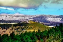 Mountain landscape with snow, clouds and pine trees royalty free stock photography