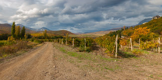Mountain landscape with earth road between vineyards near Alushta city at fall season, Crimean peninsula Stock Photos