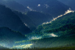 Mountain landscape in endless woods of Carpathians Royalty Free Stock Photo