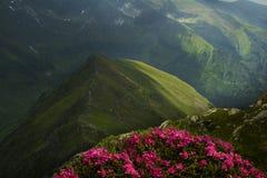 Mountain landscape in Fagaras Mountain - Carpathians Stock Photography