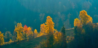 Mountain landscape in fall Stock Image