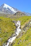 Mountain landscape with fast river. And snowy peak, Altai, Russia Royalty Free Stock Photo
