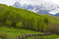 Mountain landscape and fence Stock Photography