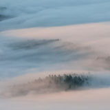 Mountain landscape fog and trees Stock Photography