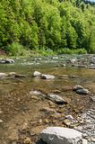 Mountain landscape, forest and fast mountain river. Beautiful scenery with a mountain river Stock Images
