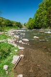 Mountain landscape, forest and fast mountain river. Beautiful scenery with a mountain river Stock Photos