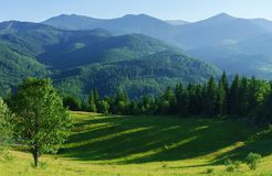 Mountain landscape with forest and meadow in summer. Royalty Free Stock Photo