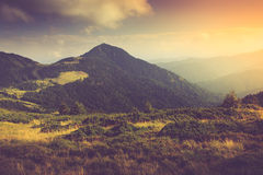 Mountain Landscape. Mountain Landscape with Forests and Hills Stock Photos