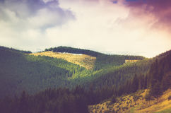 Mountain Landscape. Mountain Landscape with Forests and Hills Royalty Free Stock Photos