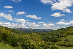 Mountain landscape with forests, vegetation and clear blue sky Stock Photos