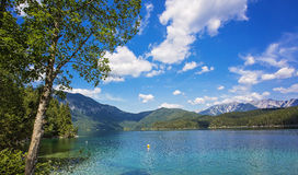 Amazing sunny summer day on the Hintersee lake Stock Images