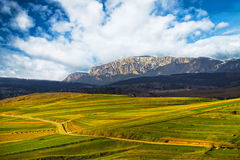 Mountain landscape with green field and mountain rock Stock Images