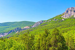 Mountain landscape and green forest Stock Photography