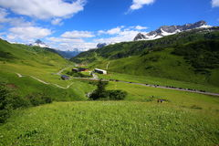 Mountain landscape with green meadows and sunshine Royalty Free Stock Images