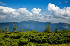 Mountain landscape with green plants on blue sky. Mountain landscape with green plants on a background of blue sky with clouds Stock Photo