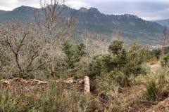 Mountain landscape with green vegetation in winter. In Riopar, Albacete province, Castilla la Mancha, Spain stock image