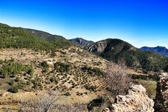 Mountain landscape with green vegetation in winter. In Riopar, Albacete province, Castilla la Mancha, Spain royalty free stock photo
