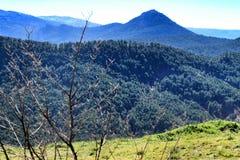 Mountain landscape with green vegetation in winter. In Riopar, Albacete province, Castilla la Mancha, Spain royalty free stock photography