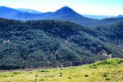Mountain landscape with green vegetation in winter. In Riopar, Albacete province, Castilla la Mancha, Spain royalty free stock image