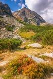 Mountain landscape, High Tatras National Park stock image