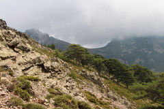 Mountain landscape on hiking trail, Corse, France. stock image