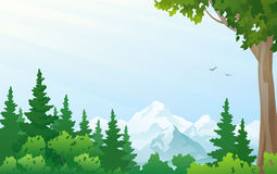 Mountain landscape. Illustration of a forest at the mountains Royalty Free Stock Photos
