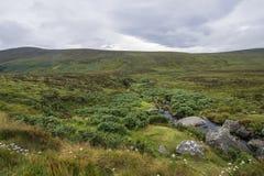 Mountain landscape in Ireland Royalty Free Stock Photos