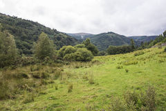 Mountain landscape in Ireland Royalty Free Stock Photography