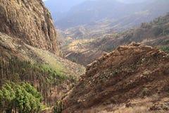 Mountain landscape of the island of La Gomera. Canary Islands. Spain. Mountain landscape of the island of La Gomera. Canary Islands royalty free stock image