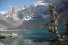 Mountain landscape with juniper tree. Kulikalon wall and Adamtash peak by cool lake. Tajikistan Stock Photos