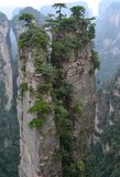 Mountain Landscape, karst pillar, Zhangjiajie - Hunan China Royalty Free Stock Images