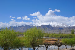 Mountain landscape. Of Ladakh. Blue skies and valleys and panoramic view of the Himalayas region of Kashmir India Royalty Free Stock Images