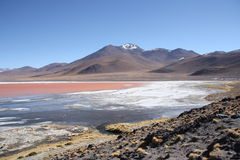 Mountain landscape with Laguna Colorada in Bolivia Stock Photos