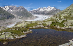 Mountain landscape. Little lake with view of the alps and the glacier of Aletch, located in the Unesco Hertitage of Aletsch, Switzerland royalty free stock image