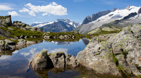 Mountain landscape. Little lake with view of the alps located in the Unesco Hertitage of Aletsch, Switzerland stock images