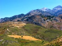 Mountain landscape with lone tree on yellow field. Picturesque foothills of the White Mountains other name Lefka Ori on Crete island, Greece Royalty Free Stock Images