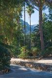 Mountain landscape Majorca Royalty Free Stock Photos
