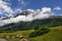 Mountain landscape with mountain river Royalty Free Stock Photos