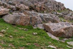 Mountain landscape mt evans colorado Royalty Free Stock Image