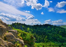 Mountain landscape. Nature composition. In a sunny day royalty free stock image