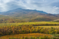 Mountain landscape near Alushta city at fall season Royalty Free Stock Photos