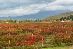 Mountain landscape near Alushta city Royalty Free Stock Photos